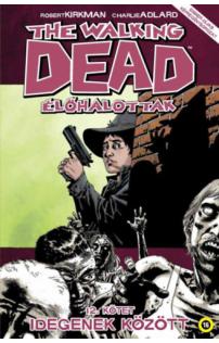 The Walking Dead - Élőhalottak 12. - Idegenek között