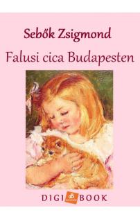 Sebők Zsigmond: Falusi cica Budapesten epub